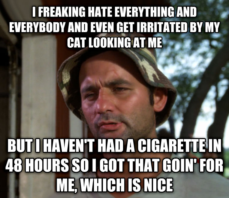Bill Murray - So I Got That Going For Me, Which is Nice i freaking hate everything and everybody and even get irritated by my cat looking at me but i haven t had a cigarette in 48 hours so i got that goin  for me, which is nice , made with livememe meme maker