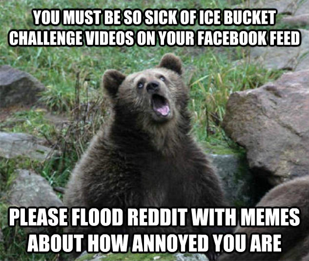 Sarcastic Bear you must be so sick of ice bucket challenge videos on your facebook feed please flood reddit with memes about how annoyed you are , made with livememe meme maker