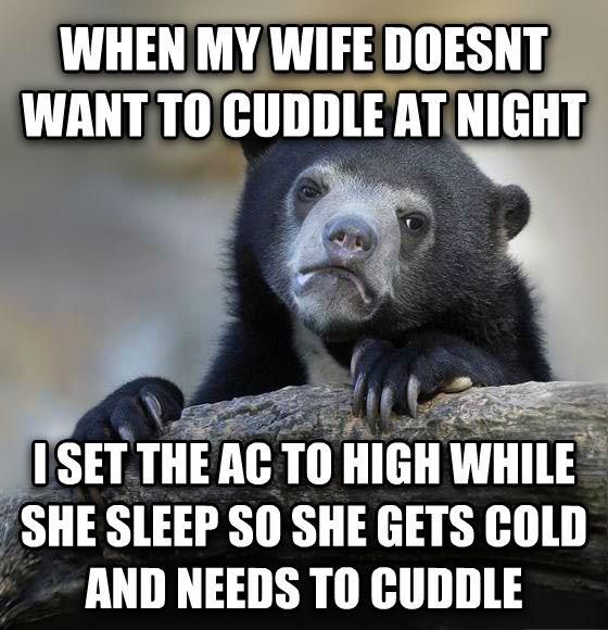 Confession Bear when my wife doesnt want to cuddle at night i set the ac to high while she sleep so she gets cold and needs to cuddle , made with livememe meme creator