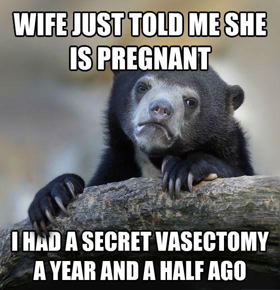 Confession Bear wife just told me she is pregnant i had a secret vasectomy a year and a half ago , made with livememe meme creator