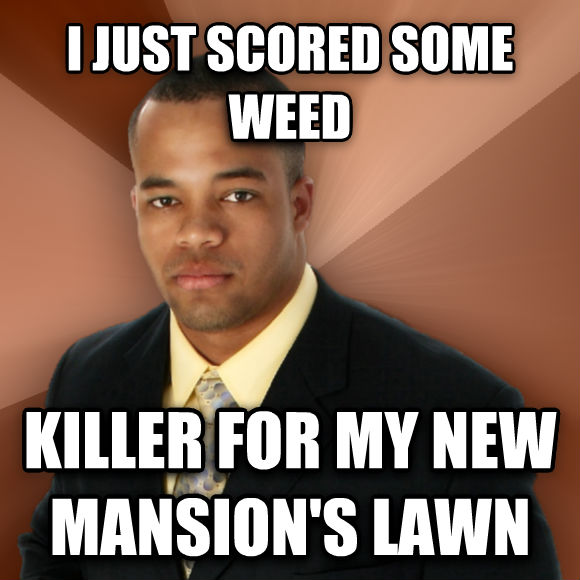 Successful Black Man i just scored some wood killer for my new mansion s lawn  , made with livememe meme maker