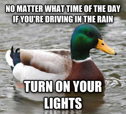 Actual Advice Mallard no matter what time of the day if you re driving in the rain turn on your lights , made with livememe meme creator