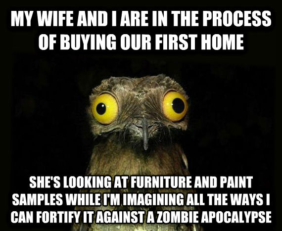 Weird Stuff I Do Potoo my wife and i are in the process of buying our first home she s looking at furniture and paint samples while i m imagining all the ways i can fortify it against a zombie apocalypse , made with livememe meme creator