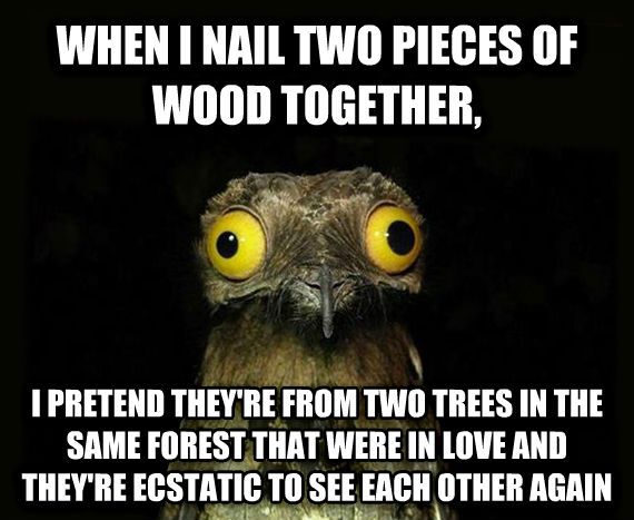 Weird Stuff I Do Potoo when i nail two pieces of wood together, i pretend they re from two trees in the same forest that were in love and they re ecstatic to see each other again , made with livememe meme generator
