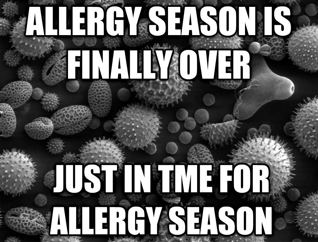 Scumbag Pollen allergy season is finally over just in tme for allergy season , made with livememe meme maker