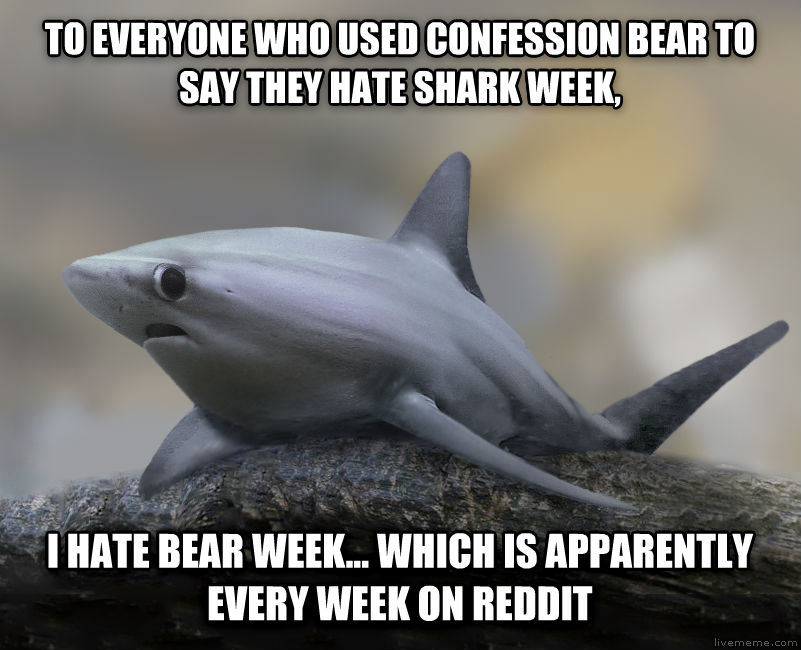 Confession Shark to everyone who used confession bear to say they hate shark week, i hate bear week... which is apparently every week on reddit , made with livememe meme generator