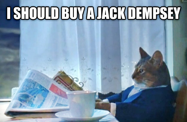 Sophisticated Cat i should buy a jack dempsey  , made with livememe meme creator