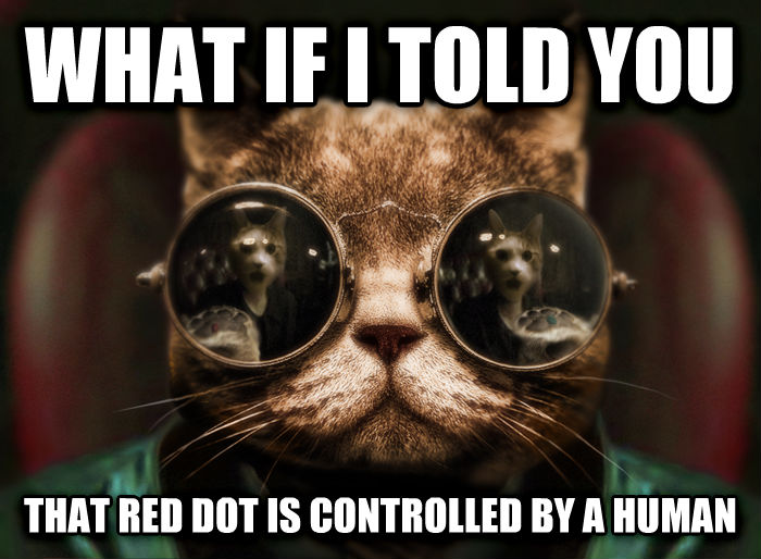 Morpheus Cat Facts what if i told you that red dot is controlled by a human , made with livememe meme creator