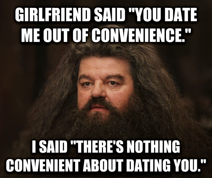 Hagrid Shouldn t Have Done That, He Should Not Have Done That girlfriend said  you date me out of convenience.  i said  there s nothing convenient about dating you.  , made with livememe meme generator