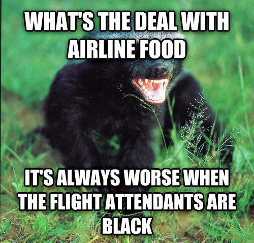 Bad Airline Food Badger what s the deal with airline food it s always worse when the flight attendants are black , made with livememe meme creator