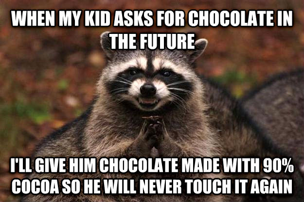 Evil Plotting Raccoon when my kid asks for chocolate in the future i ll give him chocolate made with 90% cocoa so he will never touch it again , made with livememe meme generator