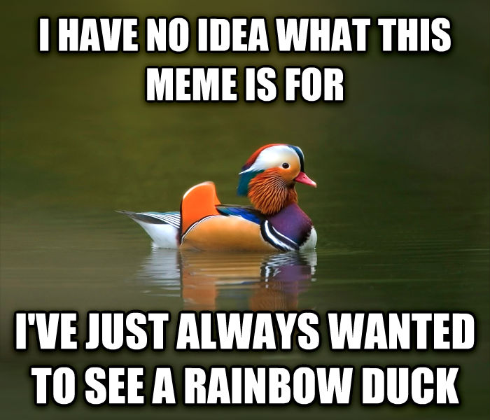 Fashionable Advice Mallard i have no idea what this meme is for i ve just always wanted to see a rainbow duck , made with livememe meme creator