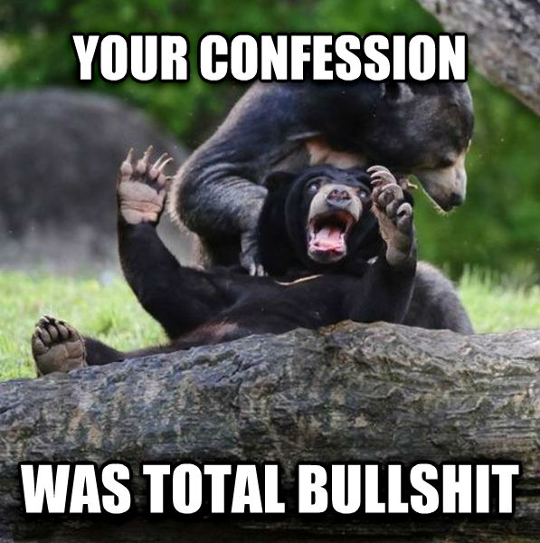 shenanigans conffision bears your confession was total shenanigans , made with livememe meme generator