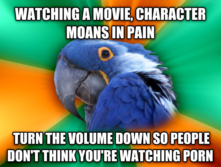 Paranoid Parrot watching a movie, character moans in pain  turn the volume down so people don t think you re watching photo  , made with livememe meme maker