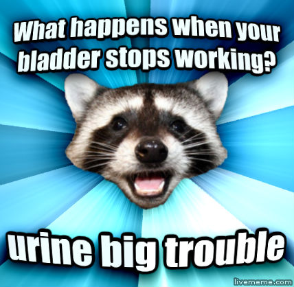 Lame Pun Coon what happens when your bladder stops working? urine big trouble  , made with livememe meme maker