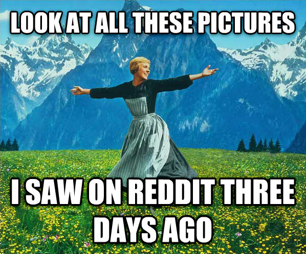 Look At All The... look at all these pictures i saw on reddit three days ago , made with livememe meme maker