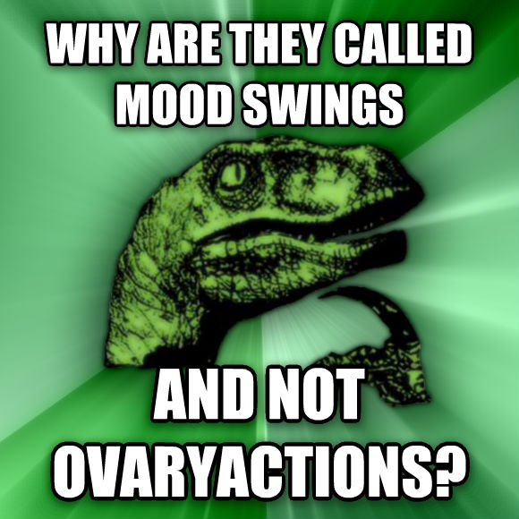 Philosoraptor why are they called mood swings and not ovaryactions?  , made with livememe meme generator