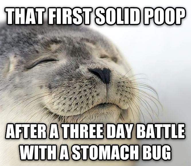 Bed Bug ... day battle with a stomach bug , made with livememe meme generator