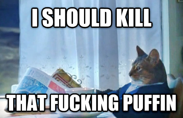 Sophisticated Cat i should kill that flipping puffin , made with livememe meme generator