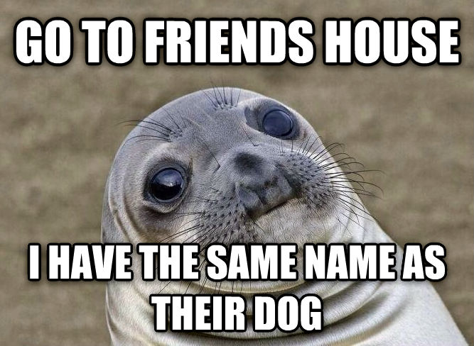 Uncomfortable Situation Seal go to friends house i have the same name as their dog , made with livememe meme maker