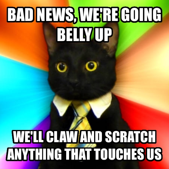 Business Cat bad news, we re going belly up we ll claw and scratch anything that touches us  , made with livememe meme generator