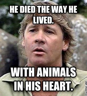 Bad Luck Steve Irwin he died the way he lived. with animals in his heart. , made with livememe meme maker