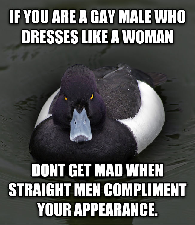 livememe.com - Angry Advice Mallard