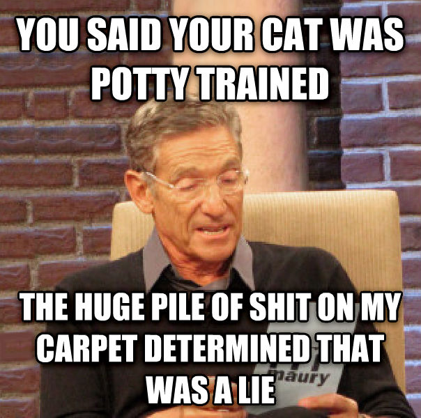 Maury Determined That Was a Lie you said your cat was potty trained the huge pile of poop on my carpet determined that was a lie , made with livememe meme maker