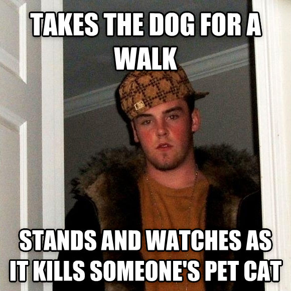 Scumbag Steve takes the dog for a walk stands and watches as it kills someone s pet cat , made with livememe meme maker