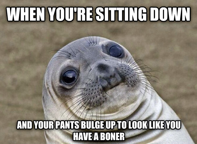 Uncomfortable Situation Seal when you re sitting down and your pants bulge up to look like you have a popsicle , made with livememe meme creator