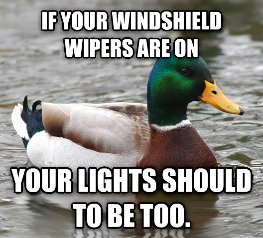 Actual Advice Mallard if your windshield wipers are on your lights should to be too.  , made with livememe meme creator